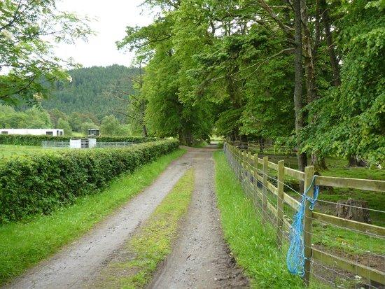 The Farm House B&B: Hofeinfahrt