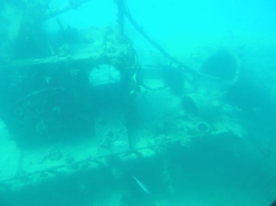 Fort Arabesque Resort, Spa & Villas: затопленный корабль