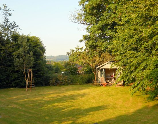 Larks Rise : Back garden and summer house