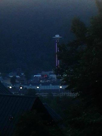 Park Vista - DoubleTree by Hilton Hotel - Gatlinburg: night view from restaurant