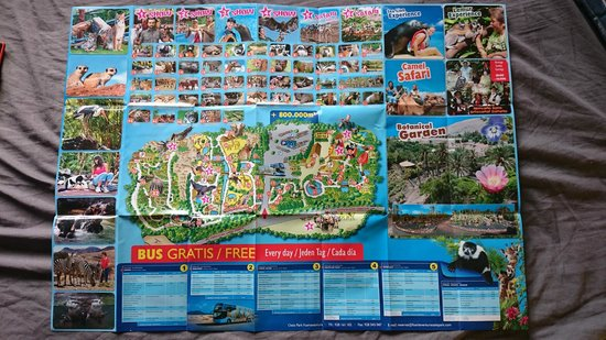 Zoo Picture of Barcelo Castillo Beach Resort Caleta de Fuste
