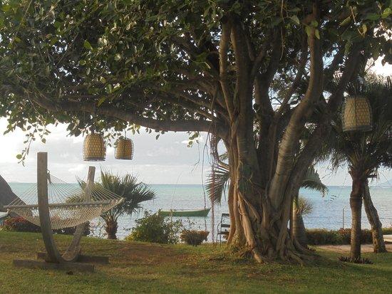 Veranda Paul et Virginie Hotel & Spa : hamac et lanternes près piscine