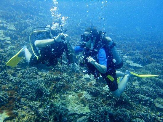 Tours en Islas del Rosario: Mergulho de cilindro nas Islas Rosario