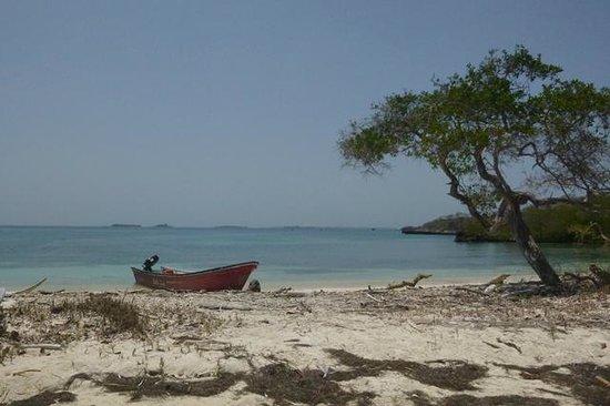 Tours in Rosario islands : Isla Rosario, parque nacional