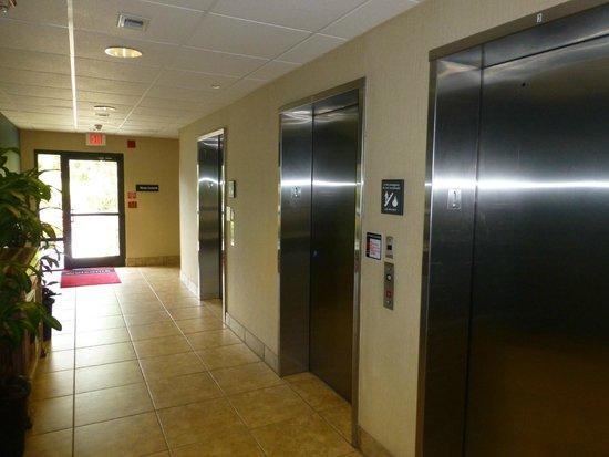 Hampton Inn Orlando International Drive/Convention Center: Elevators at Reception