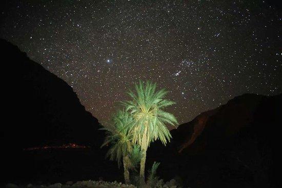 Oasis Morocco Tours - Day Tours