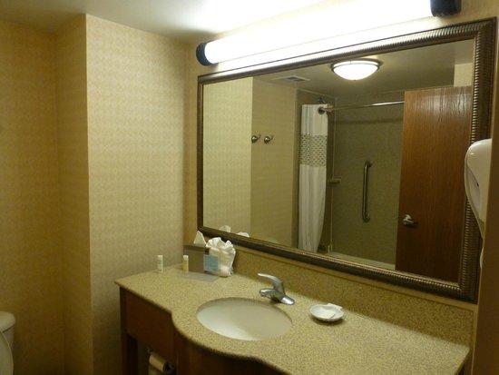 Hampton Inn Orlando International Drive/Convention Center: Bathroom