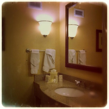 Hilton Garden Inn Yakima: The bathroom