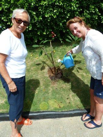 Mantra Samui Resort : Planting our tree :)