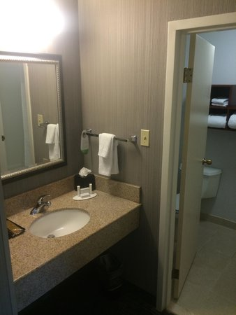 Courtyard by Marriott Atlanta Marietta/I-75 North : Bathroom Vanity