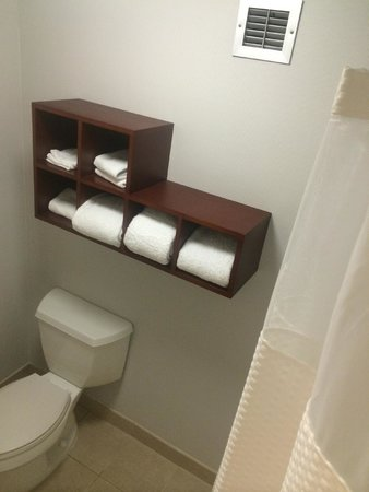 Courtyard by Marriott Atlanta Marietta/I-75 North : Bathroom Toilet/Shower Room