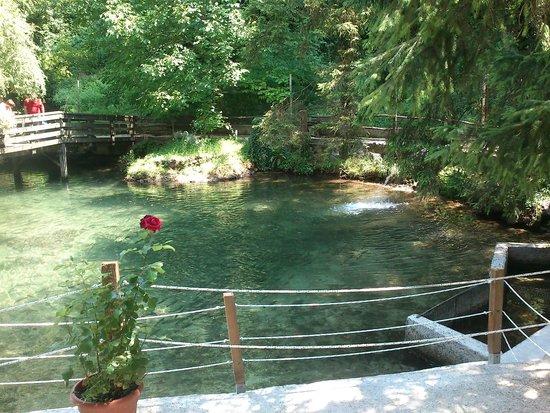 Baita Garba: il laghetto delle trote