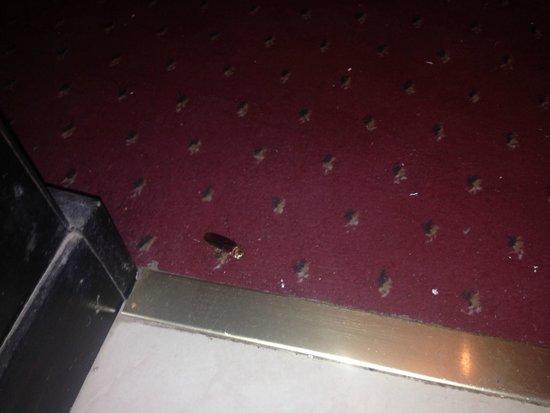 Imperial Plaza Hotel: à la porte de la chambre !!
