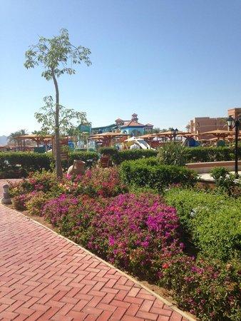 Sea Club Aqua Park : Aqua Park