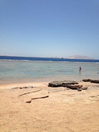 Sea Club Aqua Park : Beach Views