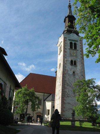 Bled Island : Vista de la torre de la Iglesia de Ntra señora, en la isla.