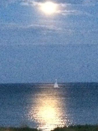 Blue Harbor Resort: Moon on lake MI