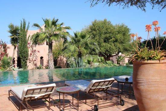 Le Jardin des Douars : piscine