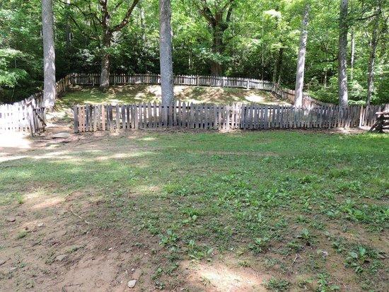 Little Greenbrier School: cemetery