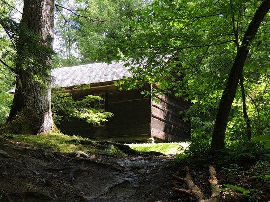 Little Greenbrier School: school house
