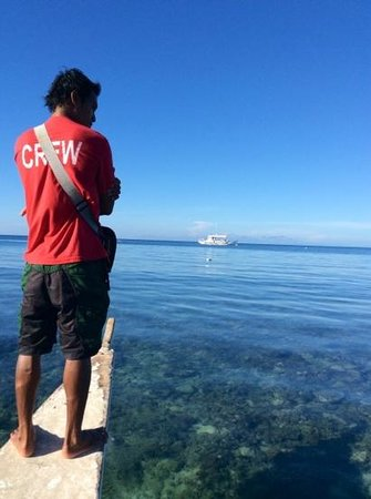 Easy Diving and Beach Resort: Dive crew