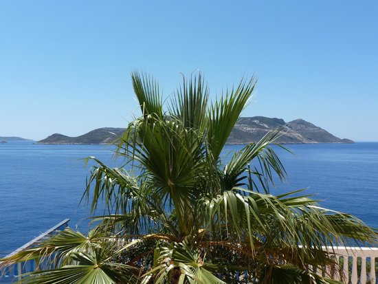 Hotel Cachet: View