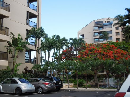 Sands of Kahana: at least the grounds were beautiful and well maintained