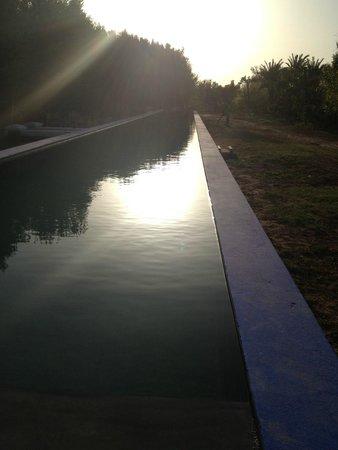 DarZahia: La piscine...