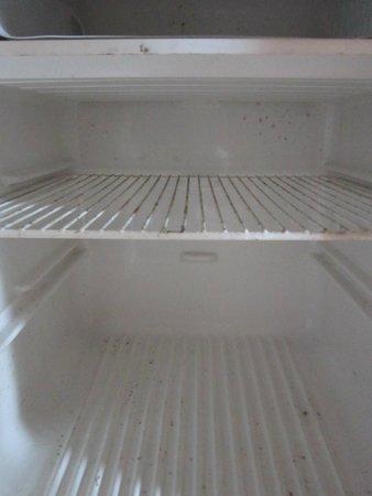 Marina West Motel : mold in fridge