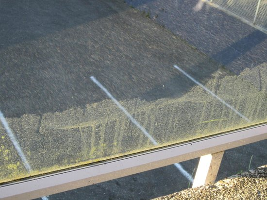 Marina West Motel: 3/4 of our patio rail glass was cleaned, this is green stuff on lower 1/4