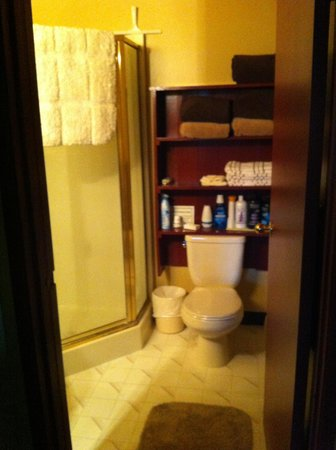 Kicking Horse Canyon B&B: bathroom including all toiletries incase you'd forgotten anything