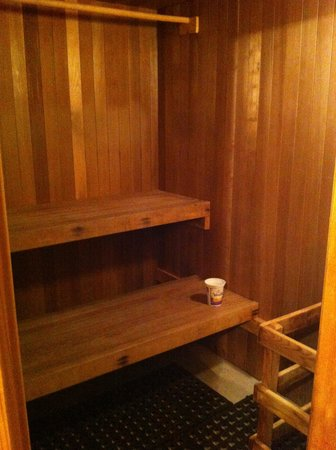Kicking Horse Canyon B&B: Private Sauna