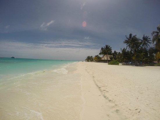 Meeru Island Resort & Spa : Strand