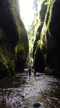 Oneonta Gorge: A 5 year old and a 7 year old can do it you have to do it