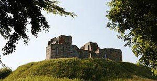 Vine Hotel: Stafford Castle