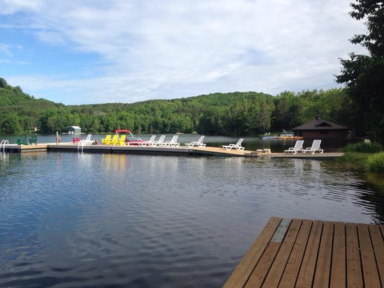 Cedar Grove Lodge: Beach and docks with lots of loungers and Muskoka chairs
