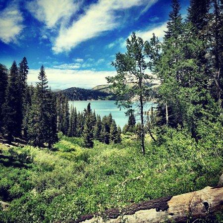 写真Lake Tahoe Nevada State Park枚