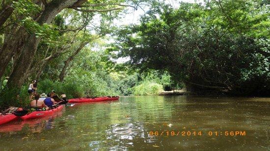 Outfitters Kauai: Kayaking