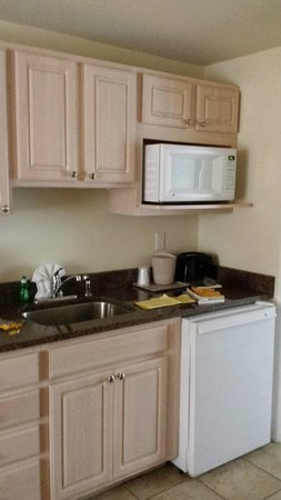 Madison Avenue Beach Club Motel: Room kitchen