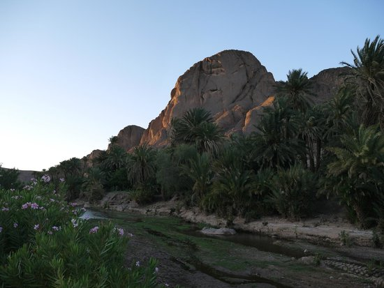 Adventure Morocco Day Tours: Oasi di Fint