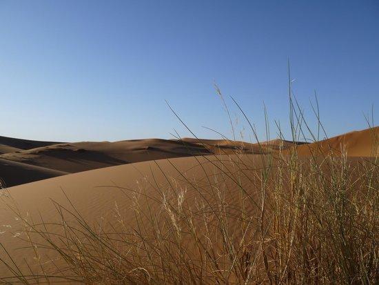 Adventure Morocco Tours: Sahara