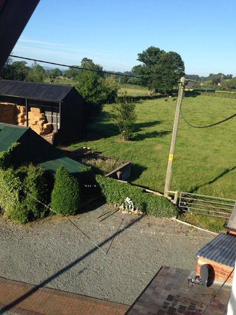 Llandysilio, UK: View from our room