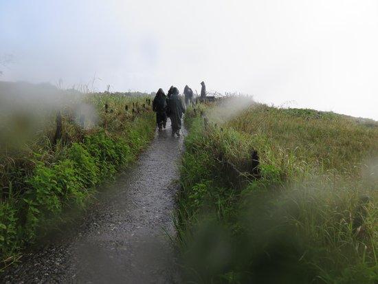 Mosi-oa-Tunya / Victoria Falls National Park : Walking in the distance