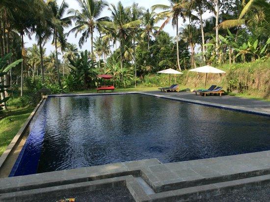 Sapulidi Bali Resort & Spa : Hotel pool