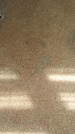 Royal Albion Hotel-Brighton: Filthy stained carpet in the room.