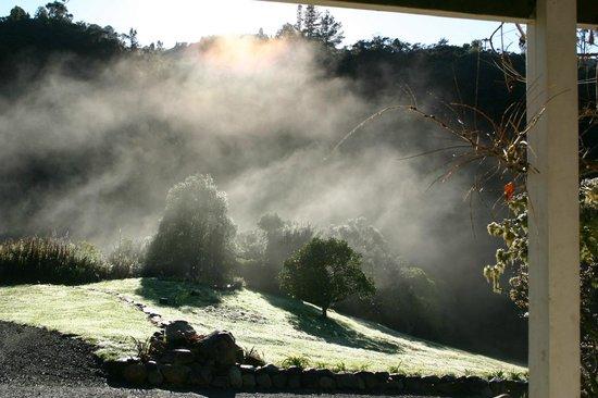 Wairua Lodge - Rainforest River Retreat: Mountain Mist
