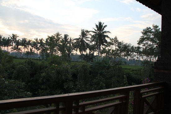 Bhuwana Ubud Hotel: View from balcony in the morning