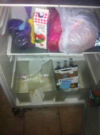 Momo's Hostel: fridge