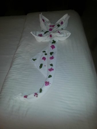 Sindbad Aqua Hotel & Spa : left by the Maid service