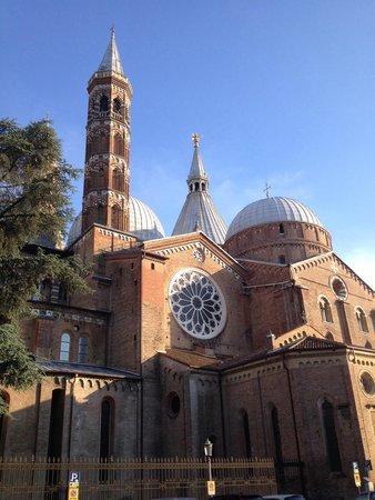 Basilica di Sant'Antonio - Basilica del Santo: Basilica S.Antonio: Imponente ma armonicamente movimentata.